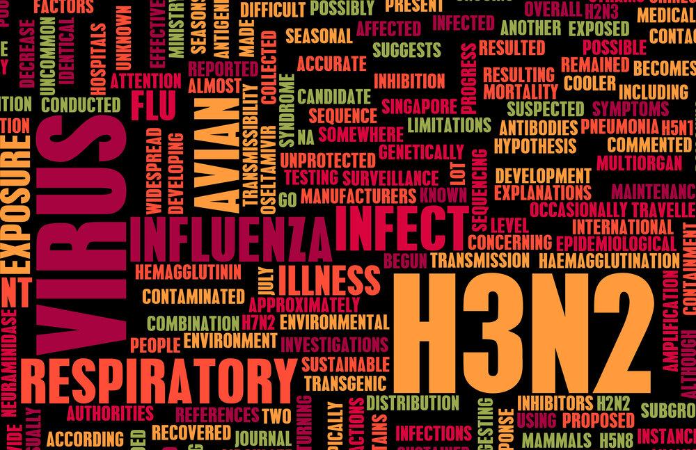 Grip türleri ve bağışıklık sistemi.