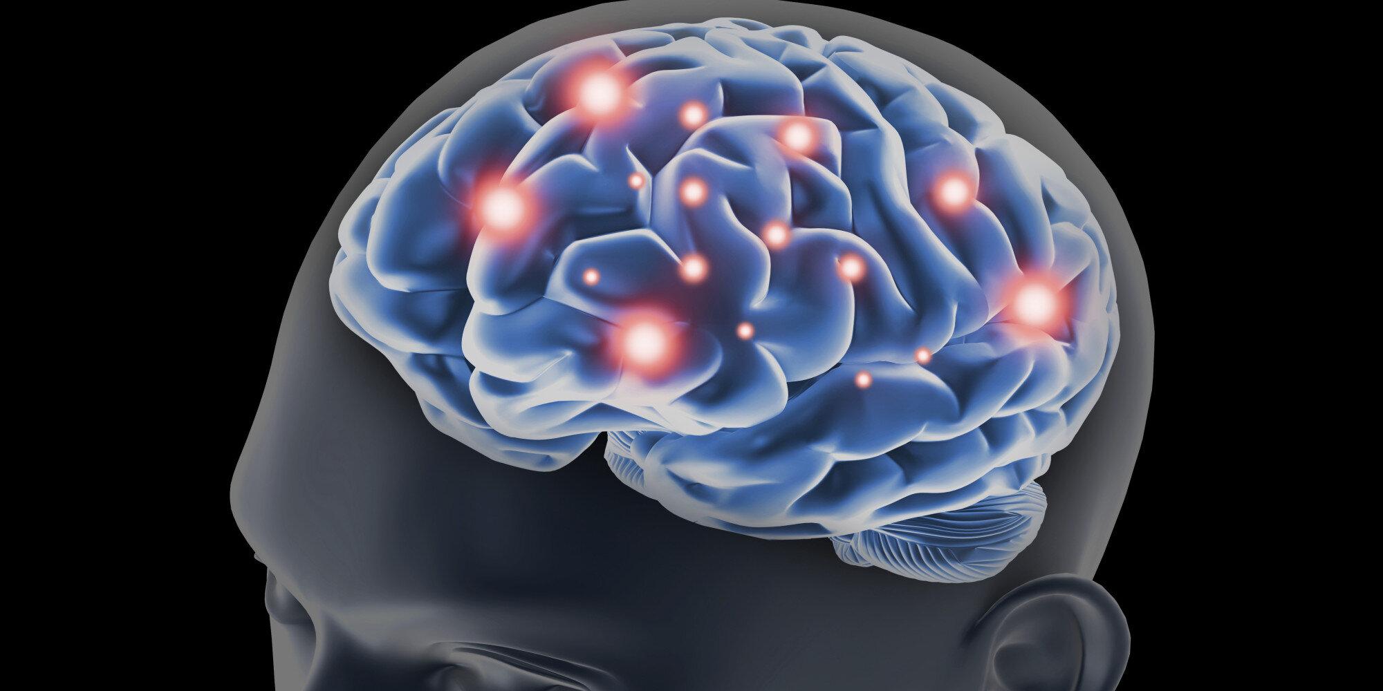 beyin-fonksiyonlari