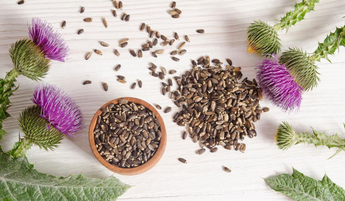 Kilo aldırıcı şifalı bitkiler hangileridir