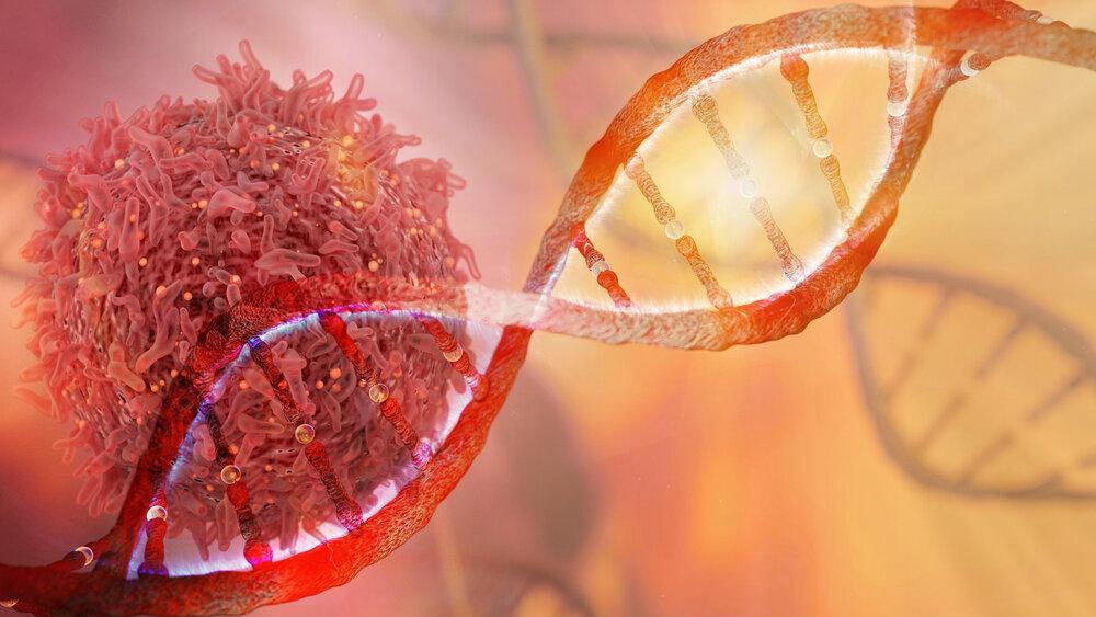 Araştırmalar antioksidanların bazı kanser türleri üzerindeki olumlu etkilerini incelemektedir.