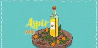 aspir-yagi