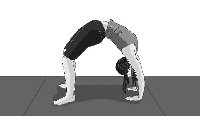 Temel jimnastik hareketleri nelerdir?